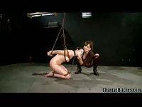 Titty slut is in bondage