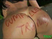 Busty tranny babe gets wild scene 3